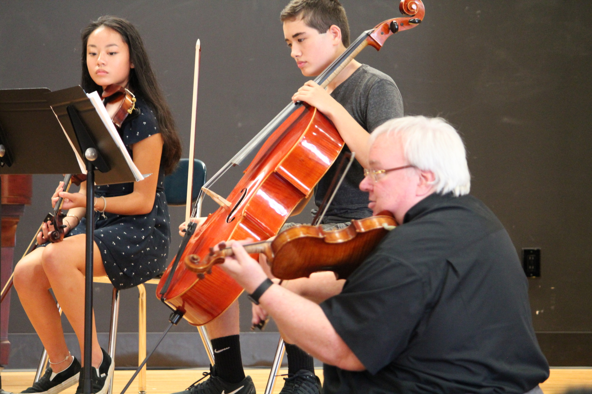 Chamber Ensemble Coachings
